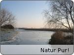 Natur Pur auf Rügen