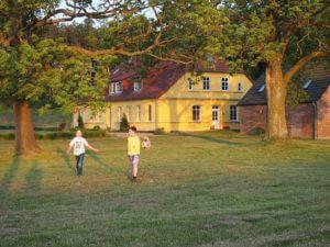 Hinter dem Ferienhaus, abseits der Freisitze, mit sehr viel Platz steht ein Fussballtor.